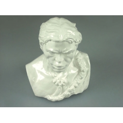 Bust of the Cro-Magnon Man