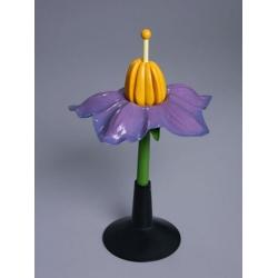 Potato Flower Model