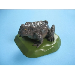Toad Model