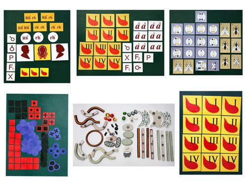 Human Genetics, Magnetic Demonstration Cards