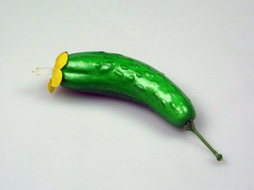 Cucumber Model