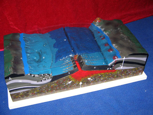 Ocean floor model manufacturers ocean floor model for Ocean floor description