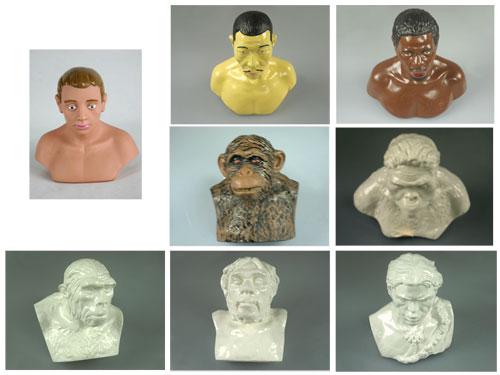 Human Evolution Set