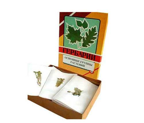 Leaf Specimen Collection