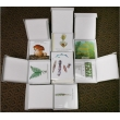 Animal Reproduction Magnetic Demonstration Cards
