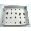 Harmful Insects Specimen Collection