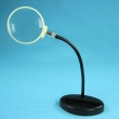Magnifying Glass 2.5*104
