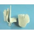 Cribriform Plate and Ethmoid Bone Model