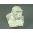 Bust of the Pithecanthropus