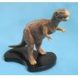 Tyrannosaurus Model