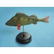 Fish Model