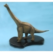Brachiosaurus Model