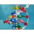 Human DNA Model