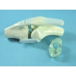Knee Joint Model with Tendons
