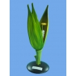 Wheat Flower Model