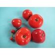 Tomato Model Set